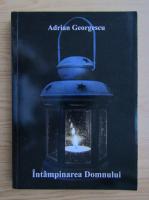 Anticariat: Adrian Georgescu - Intampinarea domnului