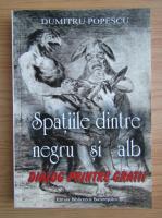 Dumitru Popescu - Spatiile dintre negru si alb