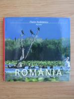 Anticariat: Florin Andreescu - Romania