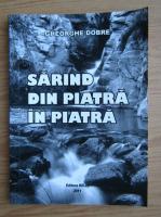 Anticariat: Gheorghe Dobre - Sarind din piatra in piatra