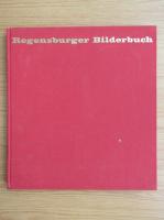 Anticariat: Regensburger Bilderbuch