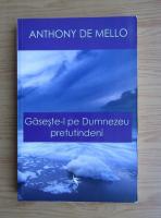 Anthony de Mello - Gaseste-l pe Dumnezeu pretutindeni