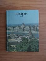 Anticariat: Budapest
