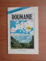 Anticariat: Dan Balteanu - Roumanie. Apercu geographique