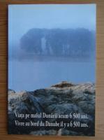 Anticariat: Viata pe malul Dunarii acum 6500 ani
