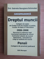 Anticariat: Gabriela Georgiana Schmutzer - Dreptul muncii