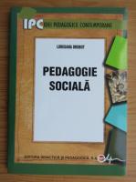 Anticariat: LoredanA Drobot - Pedagogie sociala