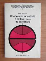 Anticariat: Petre Tanasie - Cooperarea industriala a tarilor in curs de dezvoltare
