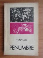 Anticariat: Stefan Luca - Penumbre
