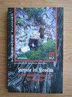 Anticariat: Dan Silviu Boerescu - Sarpele lui Nicodim si alte simboluri sacre si misterioase ale romanilor