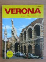 Anticariat: Lanfranco Franzoni - Verona
