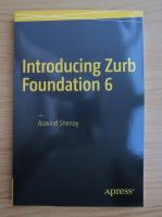 Anticariat: Aravind Shenoy - Introducing Zurb Foundation 6