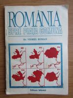 Viorel Roman - Romania spre piata comuna