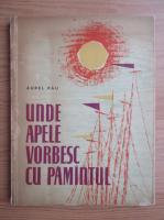 Anticariat: Aurel Rau - Unde apele vorbesc cu pamantul