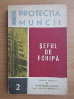 Anticariat: Bruno Mochi - Seful de echipa (volumul 2)