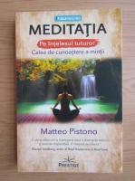 Anticariat: Matteo Pistono - Meditatia pe intelesul tuturor. Calea de cunoastere a mintii