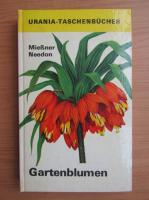 Anticariat: Eckart Miessner - Gartenblumen