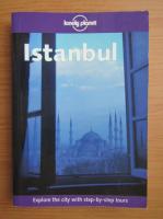 Tom Brosnahan - Istanbul