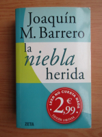 Anticariat: Joaquin M. Barrero - La niebla herida
