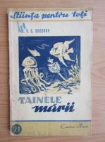 Anticariat: V. G. Bogorov - Tainele marii (1947)