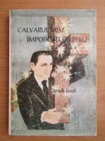 Varadi Iosif - Calvarul meu impodobit cu perle (volumul 2)