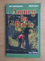 Anticariat: Dan Smantanescu - Amurg la Paris