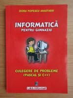 Anticariat: Doru Popescu Anastasiu - Informatica pentru gimnaziu. Culegere de probleme