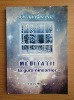 Anticariat: Florian Saioc - Meditatii la gura ninsorilor