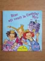 Ana Zabo - Bine ati venit la Castelul Mov