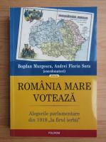 Anticariat: Bogdan Murgescu - Romania Mare voteaza. Alegerile parlamentare din 1919 la firul ierbii