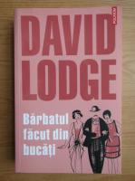 Anticariat: David Lodge - Barbatul facut din bucati