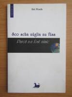 Rut Plouda - Parca n-a fost nimic (editie bilingva)
