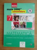 Anticariat: Anton Negrila - Algebra, geometrie. Clasa a VIII-a, partea a II-a (2012)