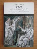 Anticariat: Stuart Piggott - I Druidi