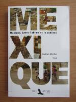 Anticariat: Gaetan Mortier - Mexique. Entre l'abime et le sublime