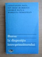 Anticariat: Constantin Fota - Bursa la dispozitia intreprinzatorului