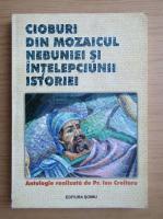 Anticariat: Ion Croitoru - Cioburi din mozaicul nebuniei si intelepciunii istoriei