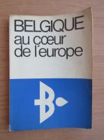Anticariat: Belgique au coeur de l'Europe