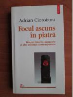 Anticariat: Adrian Cioroianu - Focul ascuns in piatra