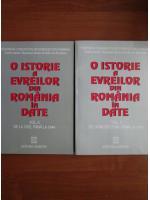 Anticariat: O istorie a evreilor din Romania in date (2 volume)