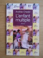 Anticariat: Andree Chedid - L'enfant multiple