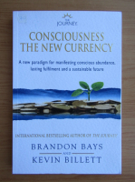 Anticariat: Brandon Bays - Consciousness the new currency