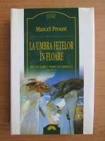 Marcel Proust - In cautarea timpului pierdut, volumul 2. La umbra fetelor in floare