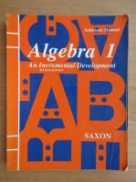 Anticariat: John H. Saxon - Algebra (volumul 1)