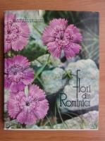 Anticariat: Mircea Bichiceanu - Flori din Romania