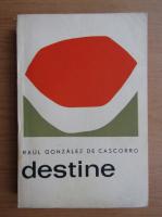Anticariat: Raul Gonzalez de Cascorro - Destine