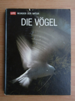 Anticariat: Roger Tory Peterson - Die Vogel