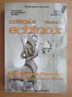 Anticariat: Caietele Echinox, volumul 33. Sujets depourvus d'importance