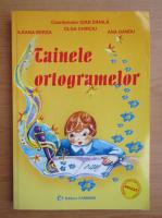 Ioan Danila - Tainele ortogramelor