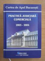Anticariat: Practica judiciara comerciala 2003-2004